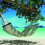The Definitive List  Chill Out - Ambient - Lounge
