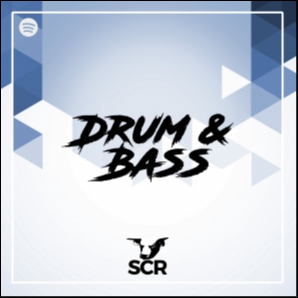 Drum & Bass / SCR