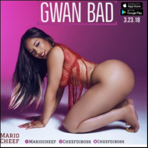 Mario Cheef-Gwan Bad