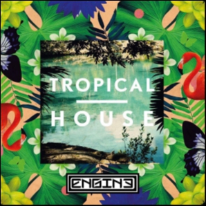 Tropical Summer - Dj Engine