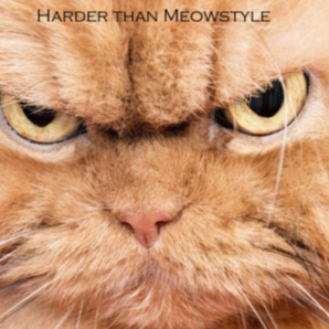 Harder than Meowstyle