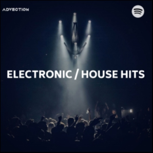 Hot Electronic / House Hits