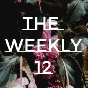 The Weekly 12