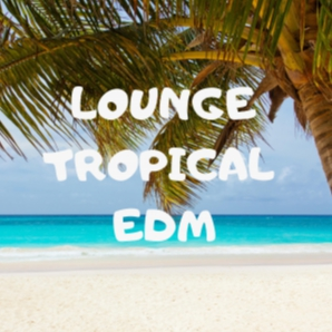 LOUNGE // TROPICAL // EDM