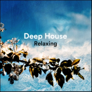 Deep House Relaxing  (  Relax , Deep House , Techno , Chill