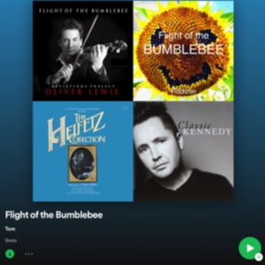 FLIGHT OF THE BUMBLEBEE... Playlist!!