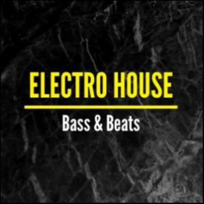 Electro House☢️ Bass & Beats